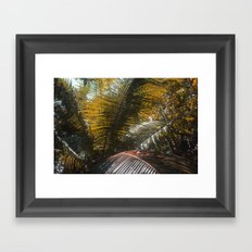 Into the Seychellian leaves Framed Art Print
