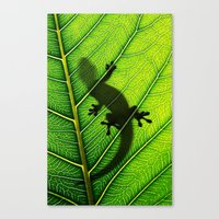 lizard Canvas Prints featuring Lizard by Nicklas Gustafsson