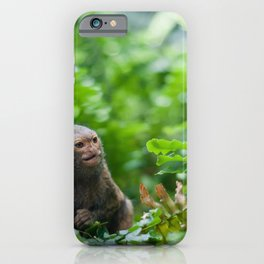 Pair of pygmy monkeys iPhone Case