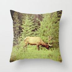 Time to Graze Throw Pillow
