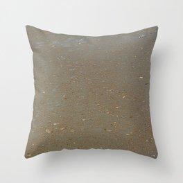 sand, sea and shells Throw Pillow