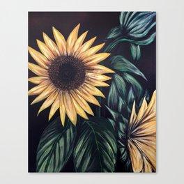 Sunflower Life Canvas Print