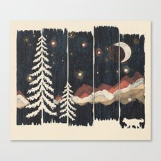 A Starry Night in the Mountains... Canvas Print