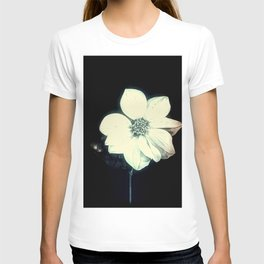 White Dahlia, Christmas Star T-shirt