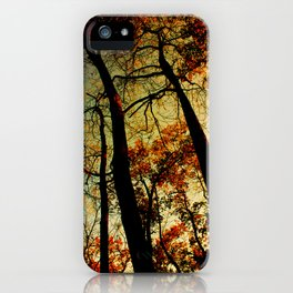 Fall Sunset Trees iPhone Case