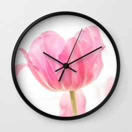 One tulip close and front view with light background Wall Clock