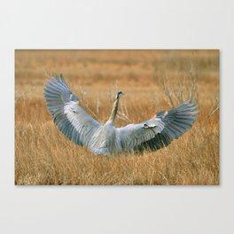 Wings Wide Open Canvas Print