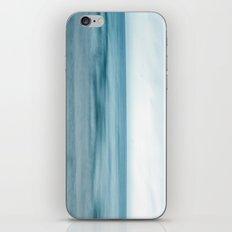 Michigan Driftwood iPhone & iPod Skin