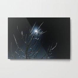 Frozen Moonlight Metal Print