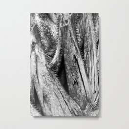Saw Palmetto Metal Print