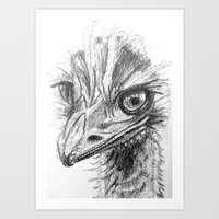 ostrich Art Prints featuring Ostrich  by Juliette Caron