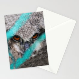 eyes of fire, young bird of prey portrait Stationery Cards