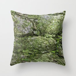 The spring wall Throw Pillow