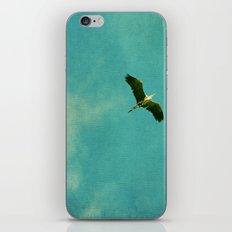 will be free iPhone & iPod Skin