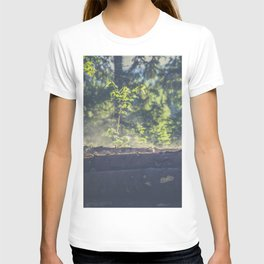Logs stacked in the forest T-shirt