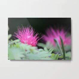 Spikey Red Flower Metal Print