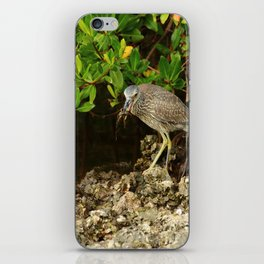 Love Crabs For Lunch iPhone Skin