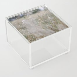 Tall wild grass growing in a meadow Acrylic Box