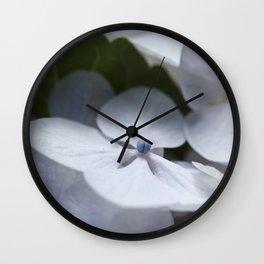 White Hydrangea Wall Clock