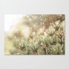 snow on pine Canvas Print