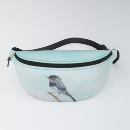 Rüppell's warbler Fanny Pack