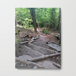 Forest Staircase Metal Print