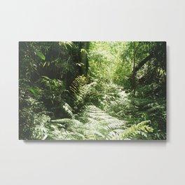 Iguazú Dream Metal Print