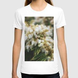 Delight DPSS170409a T-shirt