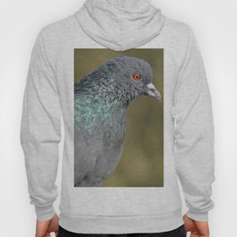 The great Indian pigeon Hoody