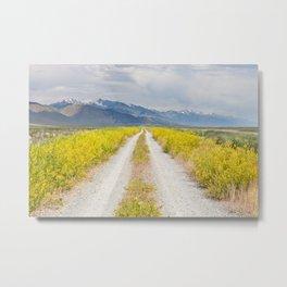 Road of Sweet Delights Metal Print