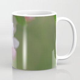Tender Apple Tree Blossoms In Spring Coffee Mug