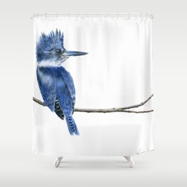 Motley Crew by Teresa Thompson Shower Curtain