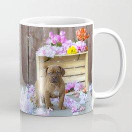 Puppy Flowers French Mastiff Dog De Bordeaux Coffee Mug