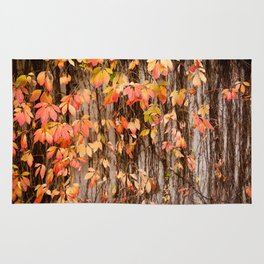 Vitaceae family ivy wall abstract Parthenocissus quinquefolia Rug