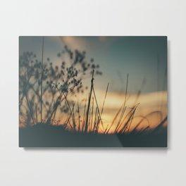 Vintage Wild Grass Sunset Metal Print