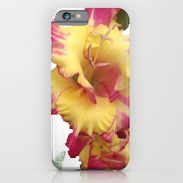 Butterflies Fairies and The Gladiola  iPhone Case