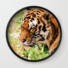 golden eyed tiger Wall Clock