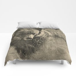 Grizzly Bear Pencil Illustration Framable Art Comforters