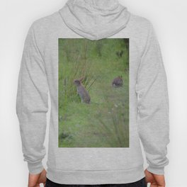 Rabbits In A Meadow Hoody