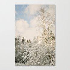 snowy landscape Canvas Print