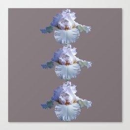 SNOW WHITE SPRING IRIS  GREY MONTAGE Canvas Print