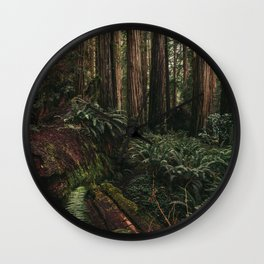 Redwood Forest Floor Wall Clock