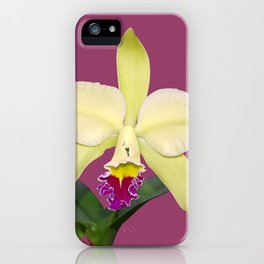 Stunning cream and magenta orchid flower iPhone Case