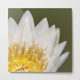 Golden Lotus Metal Print