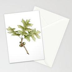 Pin Oak Stationery Cards