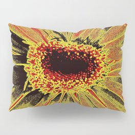 Burned Out Pillow Sham