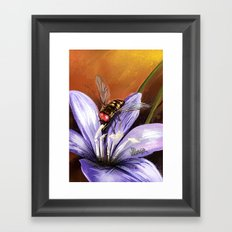 Fly on flower 10 Framed Art Print