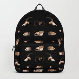 Skull Cabinet Backpack