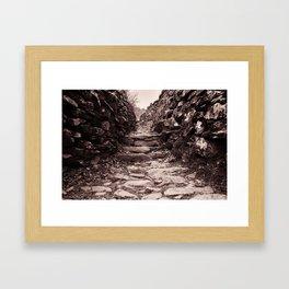 The path ahead Framed Art Print