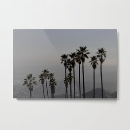 California | Palm Trees in Griffith Park Metal Print